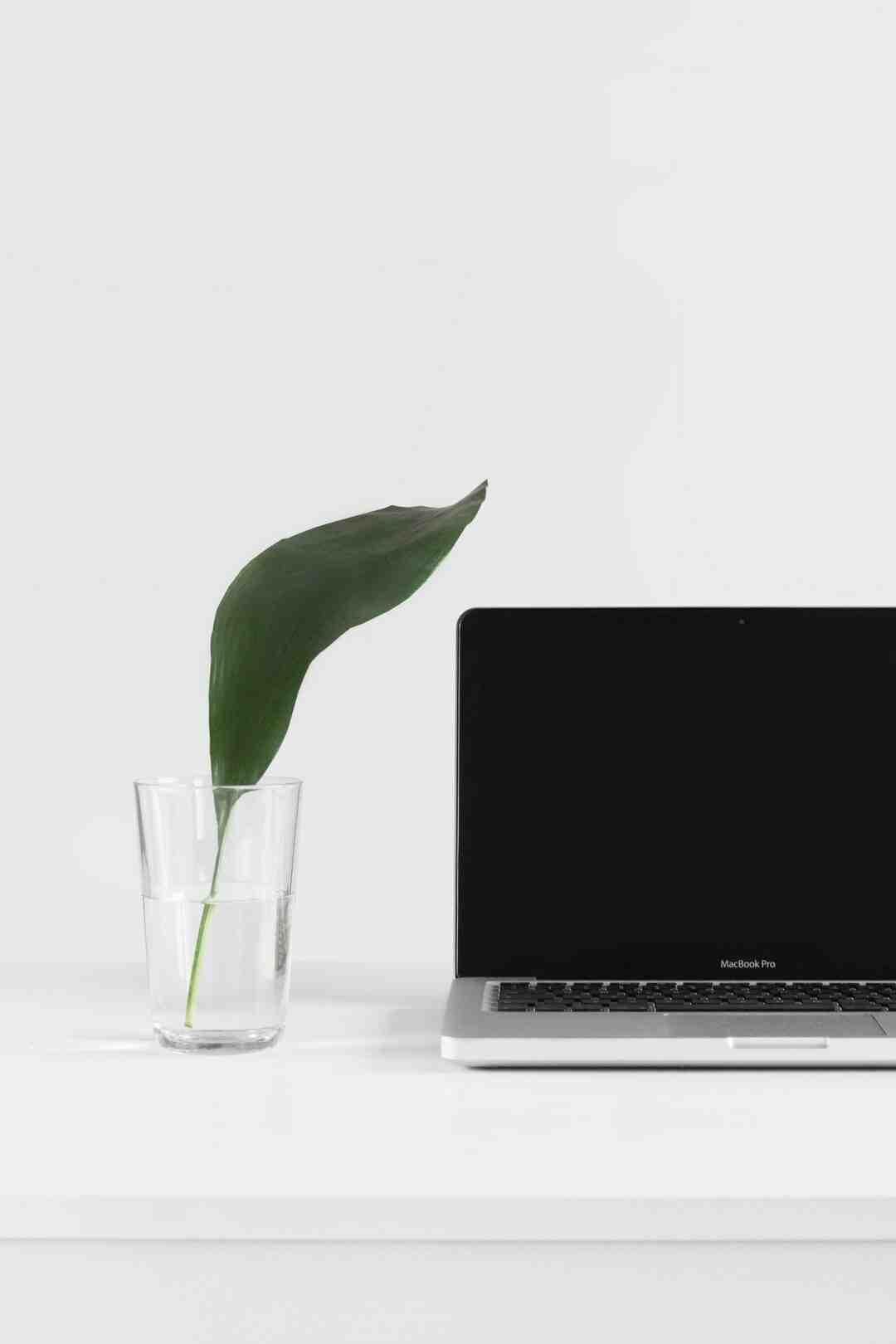 Comment créer un site de rencontres