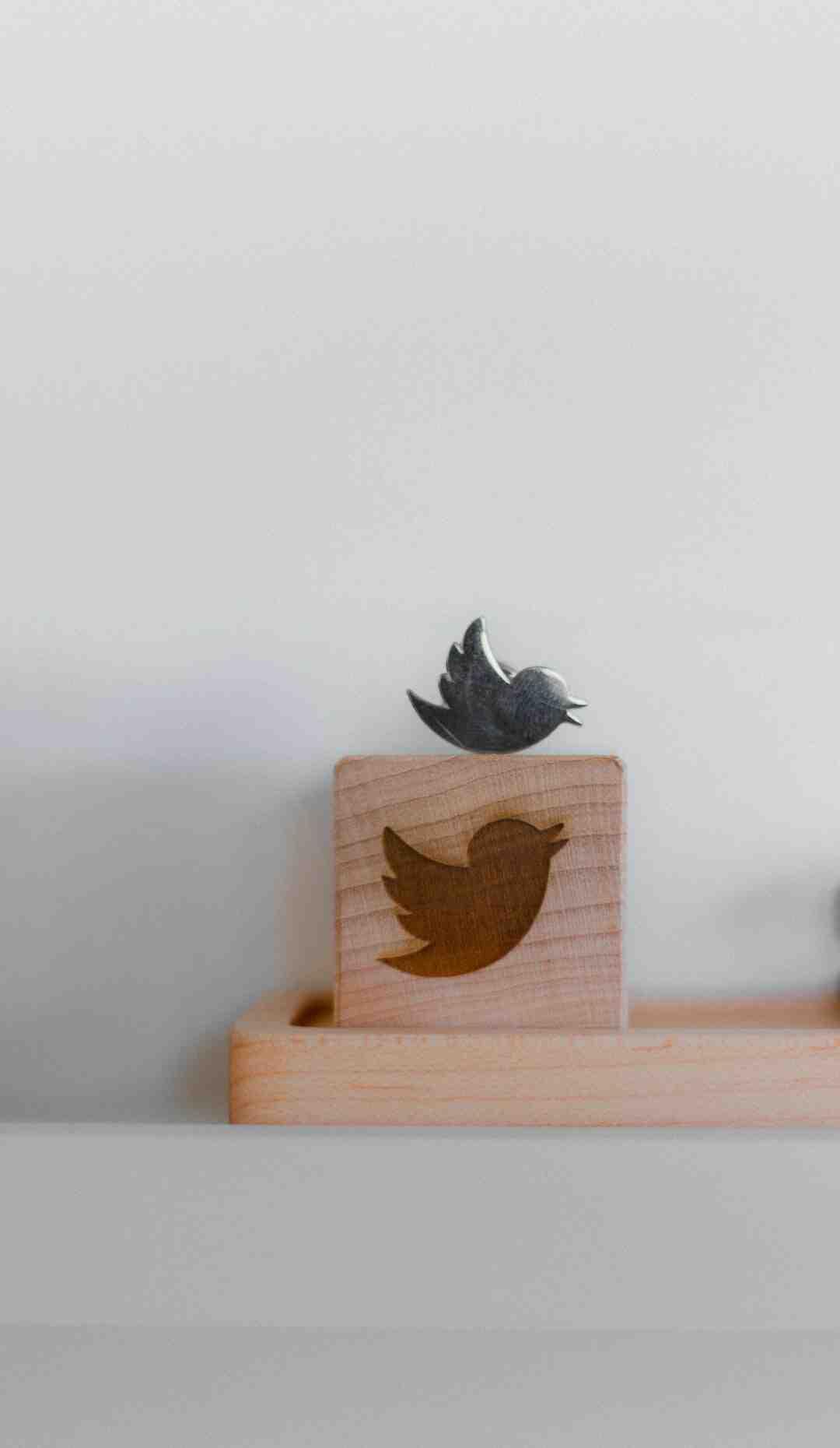 Comment faire pour avoir plus d'abonnés sur Twitter ?
