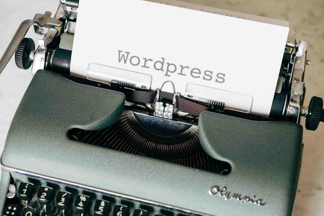 Quels plugins WordPress ?